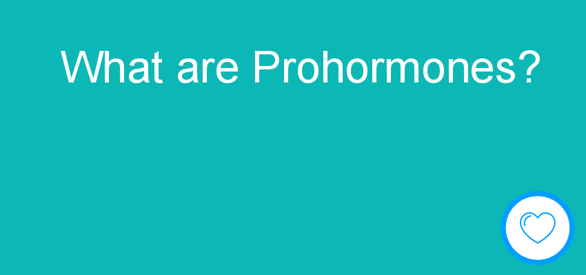 What are Prohormones?